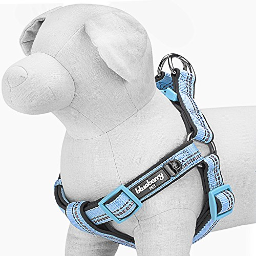 Blueberry Pet 4 Colors Soft & Comfy 3M Reflective Step-in Pastel Color Padded Dog Harness, Chest Girth 23.5 - 29.5, Baby Blue, M/L, Adjustable Harnesses for Dogs