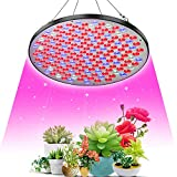 50W LED Grow Light, Mrhua Cactus Grow Light Indoor Plant Light Panel Full Spectrum 177 LEDs UV IR Bulbs Plants Growing Lamp Ultra-Thin Design for Hydroponics Seedling Succulents Veg&Flowering.