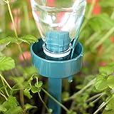 Freehawk Self Watering Stakes, Garden Waterers