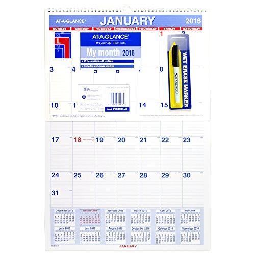 GLANCE Monthly Calendar Erasable PMLM03 28