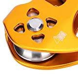 Demeras Ropeway Pulley Double Bearing Stainless