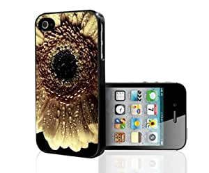 Close up Pretty White Sun Flower Hard Snap on Phone Case (iPhone 4/4s)