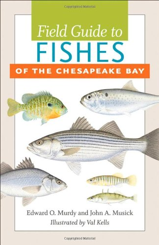 Field Guide to Fishes of the Chesapeake (Bay Fish)