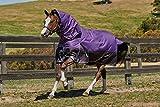 Weatherbeeta Comfitec Plus Dynamic Detach-A-Neck Medium Purple/Black 72''