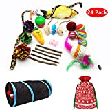 PetFavorites Cat Toys Variety Pack Assorted Kitten Toys Value Pack - Springs, Mouse, Interactive Feather Wand, Crinkle Balls, Catnip Fish, Kitty Chew Toys, Tunnel - Best Gift Set for Christmas