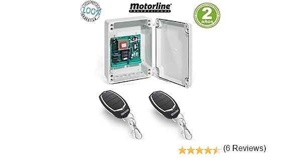 Kit Central electronica maniobras puerta parking garaje batiente de 1 o 2 hojas con paro suave y receptor incorporado y 2 mandos a distancia incopiables Motorline Falk: Amazon.es: Bricolaje y herramientas