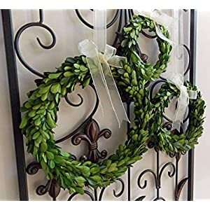 """Small Mini Preserved Boxwood Wreath with Sheer Ribbon for Spring Summer Year Round Home Decor, Wedding Chair and Pew Decorations, Home Decor, Rustic Farmhouse Style, Green, Handmade, 10"""" 45"""
