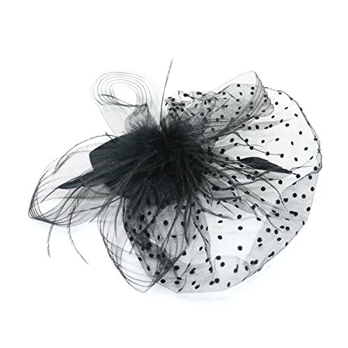 HUELE Black Bird Cage Mesh Bridal Face Veil Feather Fascinator Hair Clip Retro Style Hair Accessory for Party Valentine's Day