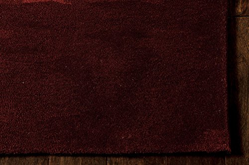 Nourison Ck31 Reflective (REF01) Garnet Rectangle Area Rug, 5-Feet 6-Inches by 7-Feet 5-Inches (5'6
