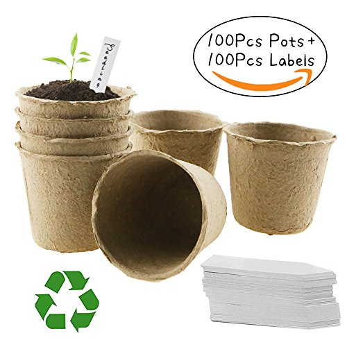 - Unigift 6 x 6cm Pulp Peat Seedling Cup- Organic Biodegradable Pots 100% Eco-Friendly Enhance Aeration- Set of 100