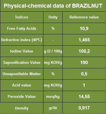 Brasil Tuerca aceite (Castanha do Pará) (16 oz) - precio al por mayor y - sostenible producto de la brasileña Amazon - extracción: prensado en frío: ...