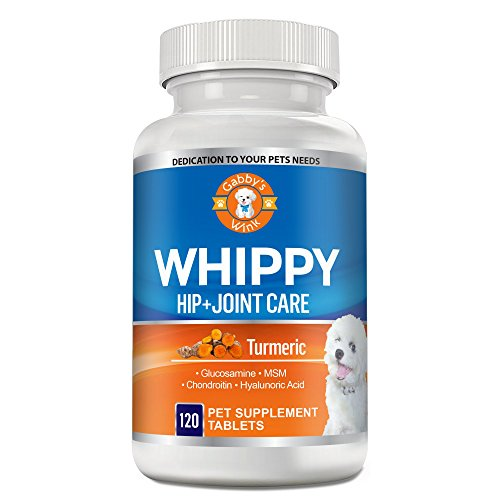 Gabby's Wink Whippy Glucosamine for Dogs and Cats, with Turmeric, Chondroitin, MSM and Hyaluronic Acid - All Natural Hip and Joint Supplement by Gabby's Wink