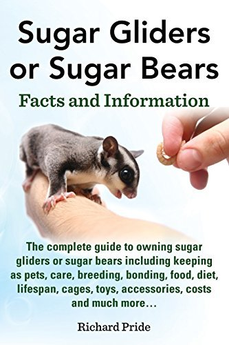 Sugar Gliders or Sugar Bears: Facts and Information on Sugar Gliders as Pets Including Care, Breeding, Bonding, Food, Diet, Lifespan, Cages, Toys, C by Richard Pride (2014-09-06) (Cage Sugar)