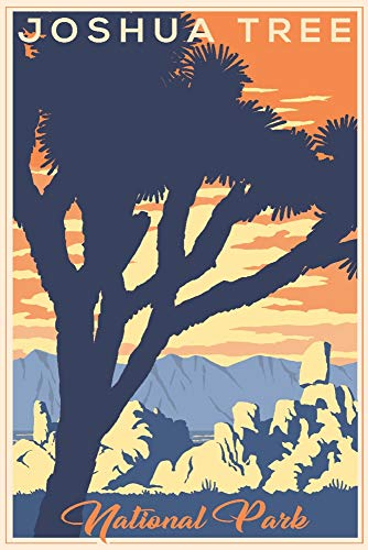 Joshua Tree National Park, California - Lithograph (16x24 Giclee Gallery Print, Wall Decor Travel ()