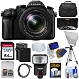 Cheap Panasonic Lumix DMC-FZ2500 4K Wi-Fi Digital Camera with 64GB Card + Battery & Charger + Case + Flash + Diffusers + Tripod + 3 Filters + Kit