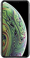 Apple iPhone Xs Max Dual SIM With FaceTime - 64GB, 4G LTE, Space Gray