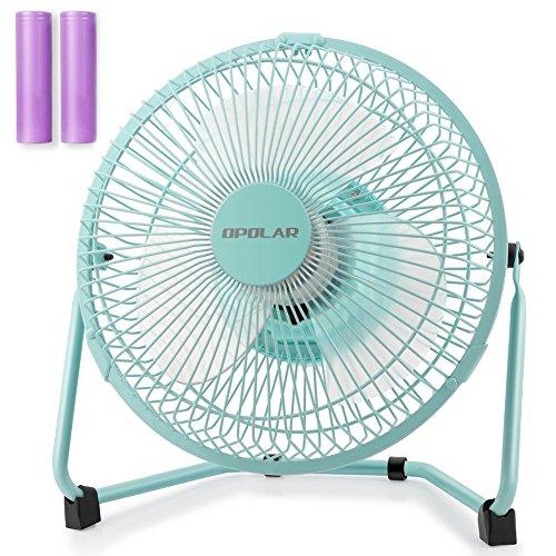 big blue fans - 5