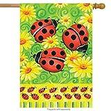 Toland Home Garden Ladybugs on Green 28 x 40 Inch Decorative Colorful Spring Summer Ladybug Flower House Flag