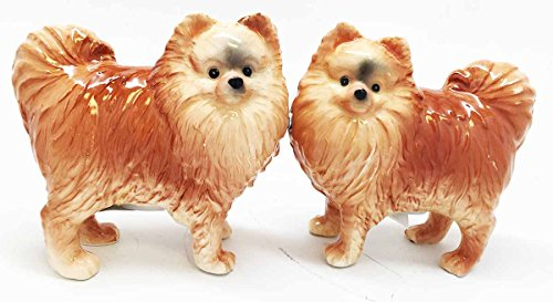 1 X Pom Pom Golden Groomed Pomeranian Attractives Magnetic Salt Pepper Shakers
