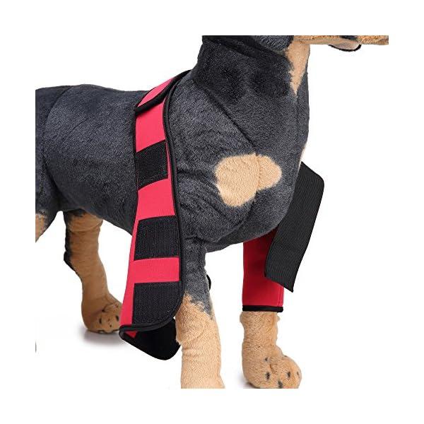 Dog-Elbow-Protector