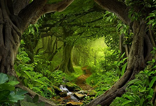 CSFOTO 7x5ft Background for Magic Forest Misty Woods Enchanted Brook Photography Backdrop Fantasy Mysterious Grassland Nature Fairy Tale Children Kid Portrait Photo Studio Props Polyester ()