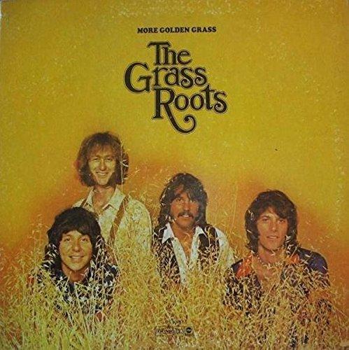 More Golden Grass