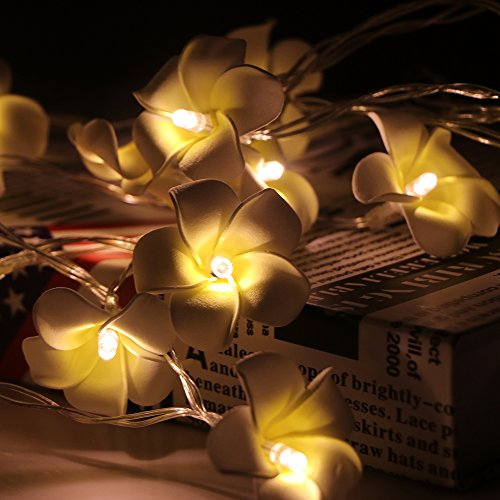 Waterproof Plumeria Flower String Lamp AOZBZ 7.2ft 20 LED for Bedroom Wedding Party Decoration Battery Operated, Warm White