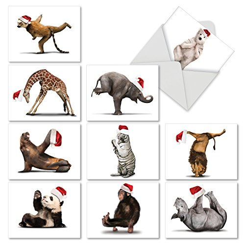 (Yuletide Zoo Yoga Christmas Greeting Cards, Boxed Set of 10 Holiday Animals in Yoga Poses 4 x 5.12 inch, Assorted Yogi Animal Cards with Envelopes, Zoo Creature Christmas Notes, M6547XSG )