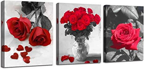 Set Of 3 Red Flower Stretched Canvas Prints Framed Wall Art Home Decor Painting