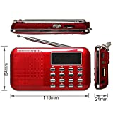 eJiasu Mini Digital USB FM/AM Portable Audio Radio Support MP3 Music Player TF Card/USB Port with LED Screen Display/Flashlight/Radio Antenna for PC iPod iPhone (Red)