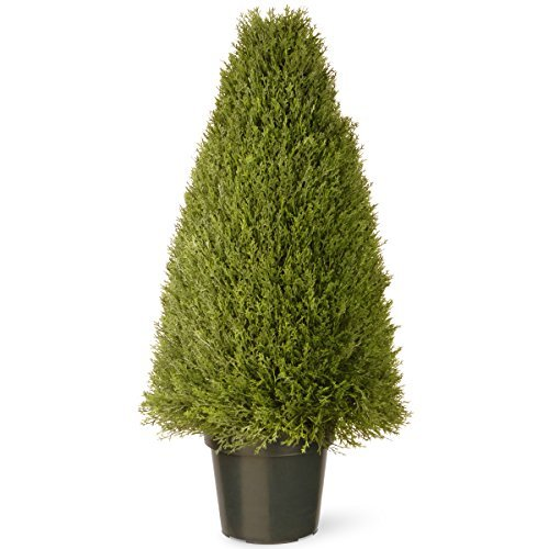 h Upright Juniper Tree in Green Round Plastic Pot (LCY4-36) ()