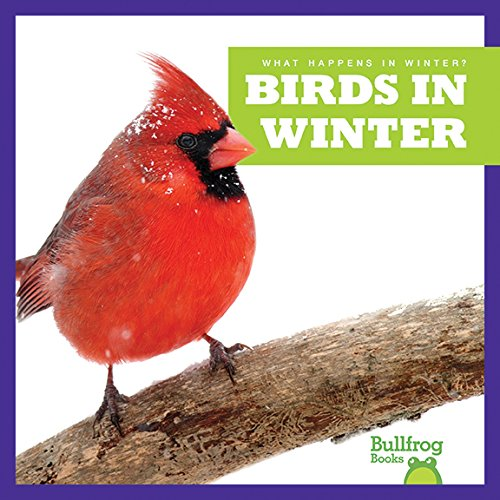 Birds in Winter (Bullfrog Books: What