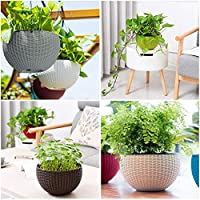 Antier 5 Pcs Rattan Baskets Waven Innovative Succulents Flower Pots with Chain Hanging Flower Pots in Multicolor