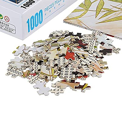 1000 Pieces of Adult Puzzle World Famous Painting Scenery Boring Toy at Home (F): Clothing