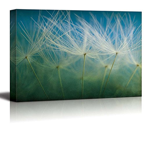 Dandelions on a Green and Blue Gradient Background