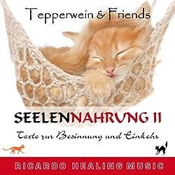 Tepperwein & Friends: Texte zur Besinnung und Einkehr (Seelennahrung 2)