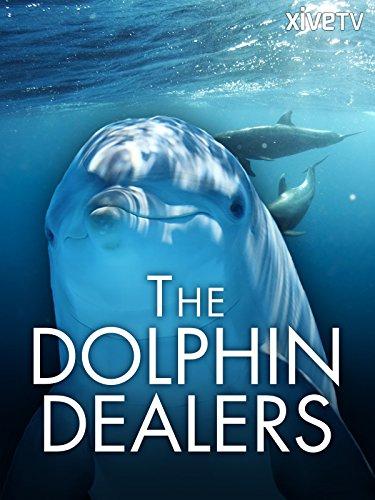 Dolphin Brads - 3