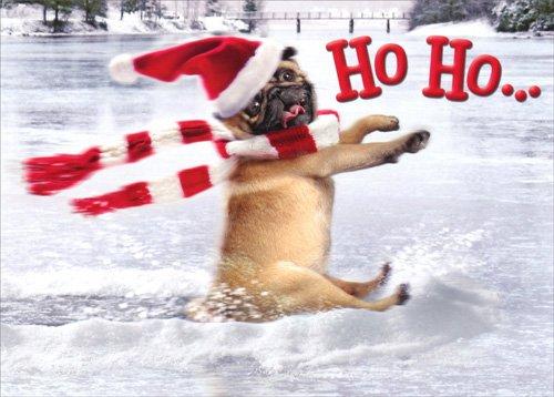 Pug Slides Across Frozen Pond - Avanti Funny