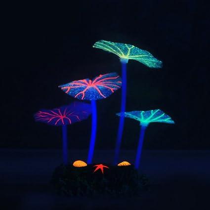 ... de Hongos, Acuario simulación Luminosa de Hojas de Loto con Brillo Coral periférico Planta de Agua para decoración de peceras: Amazon.es: Productos para ...