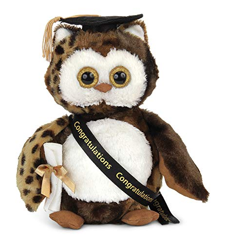 Bearington Wisdom Class of 2019 Graduation Plush Stuffed Animal Owl, 8.5 inches
