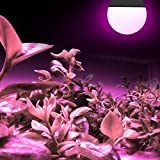3 Pack LED Indoor Plant Grow Light Bulb A19
