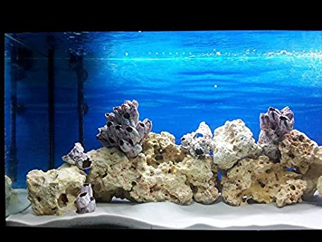 Tm Aquatix - Acuario de arena de sílice de 15 kg (0,4-0,8 mm), color blanco natural: Amazon.es: Productos para mascotas