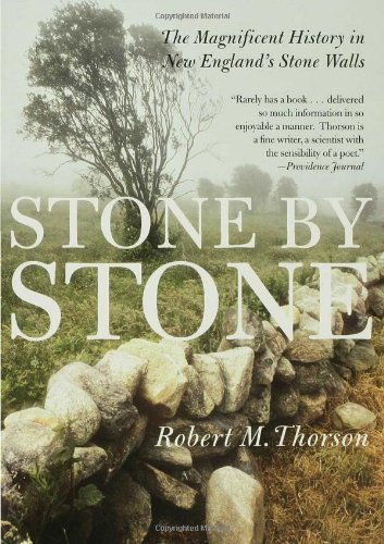 Stone by Stone: The Magnificent History in New England's Stone Walls cover