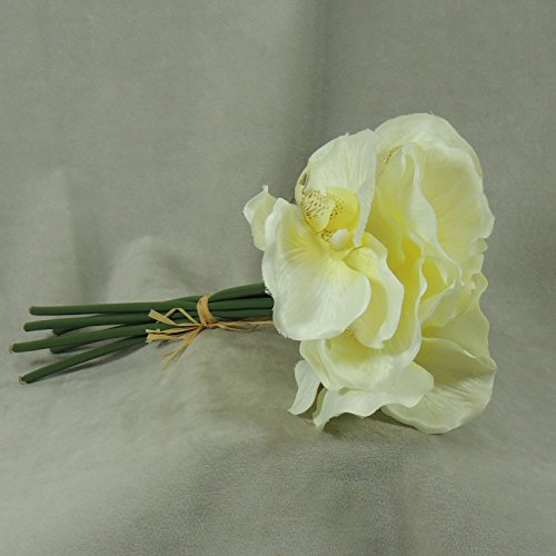 Package of 3 - Cream Silk Imitation Orchid Bouquets, 18 Total Blooms (6 Blooms Per Bunch) for Weddings, Centerpieces and More
