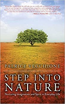 Book Step into Nature: Nurturing Imagination and Spirit in Everyday Life by Patrice Vecchione (2015-03-31)