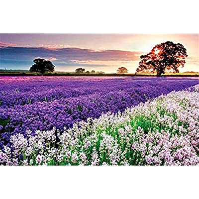 BENERAY Jigsaw Puzzle 1000 Pieces for Adults, Lavender Landscape Pattern Adult Children Puzzle Puzzle Educational Toy: Toys & Games