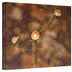 Art Wall Center Of Attention Wrapped Canvas Art By Mark Ross, 24 By 32-inch