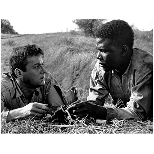 Tony Curtis 8 x 10 Photo The Defiant Ones Black & White Pic & Sidney Poitier Lying in Grass kn Photograph