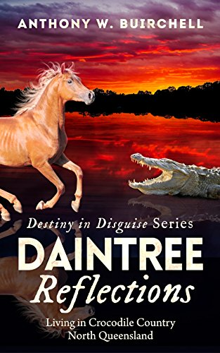 Daintree Reflections (Destiny in Disguise Book 2)