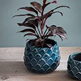 Garden Trading Artichoke Indoor Plant Pot Ceramic in Teal Large